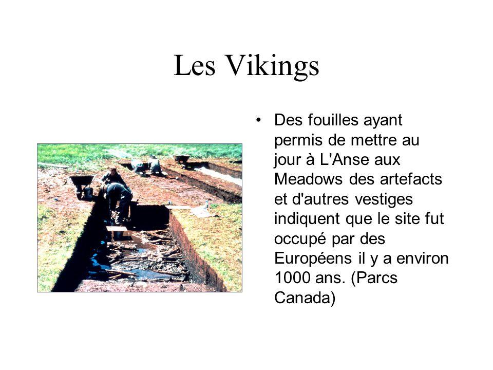 Les Vikings Cette longue maison et sa dépendance à L Anse aux Meadows ont été reconstituées par Parcs Canada.(J.