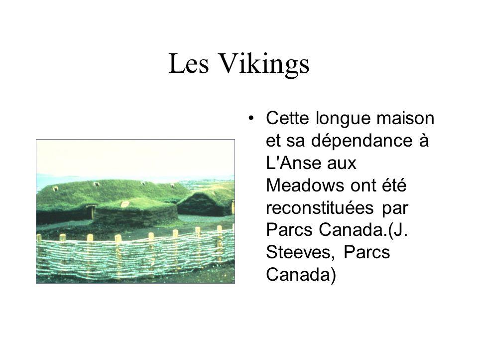 Les Vikings Artefacts scandinaves exhumés à L Anse aux Meadows : à gauche, une épingle en bronze servant à attacher des vêtements, et à droite une petite lampe en pierre.