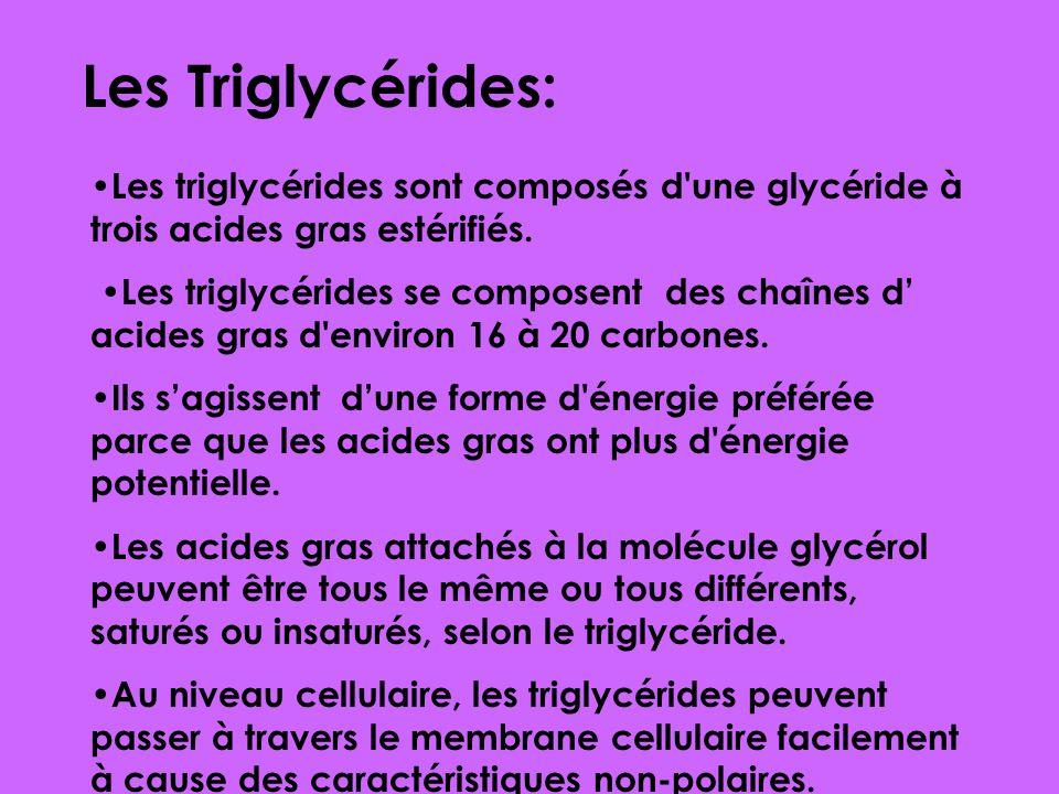 Les faits générals: Composants chimiques Les Lipides: Les lipides sont les molécules organiques non-polaires (hydrophobique) Ils sont normalement plus
