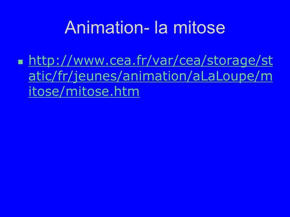 Animation- la mitose http://www.cea.fr/var/cea/storage/st atic/fr/jeunes/animation/aLaLoupe/m itose/mitose.htm http://www.cea.fr/var/cea/storage/st at