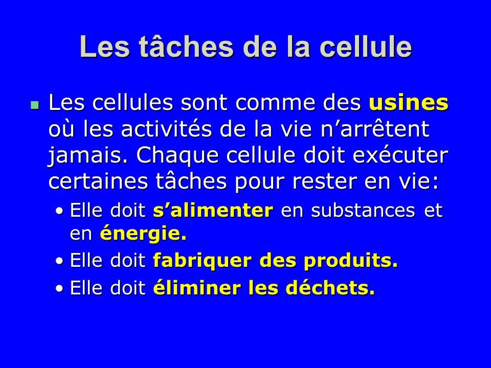 Les tâches de la cellule Les cellules sont comme des usines où les activités de la vie narrêtent jamais. Chaque cellule doit exécuter certaines tâches