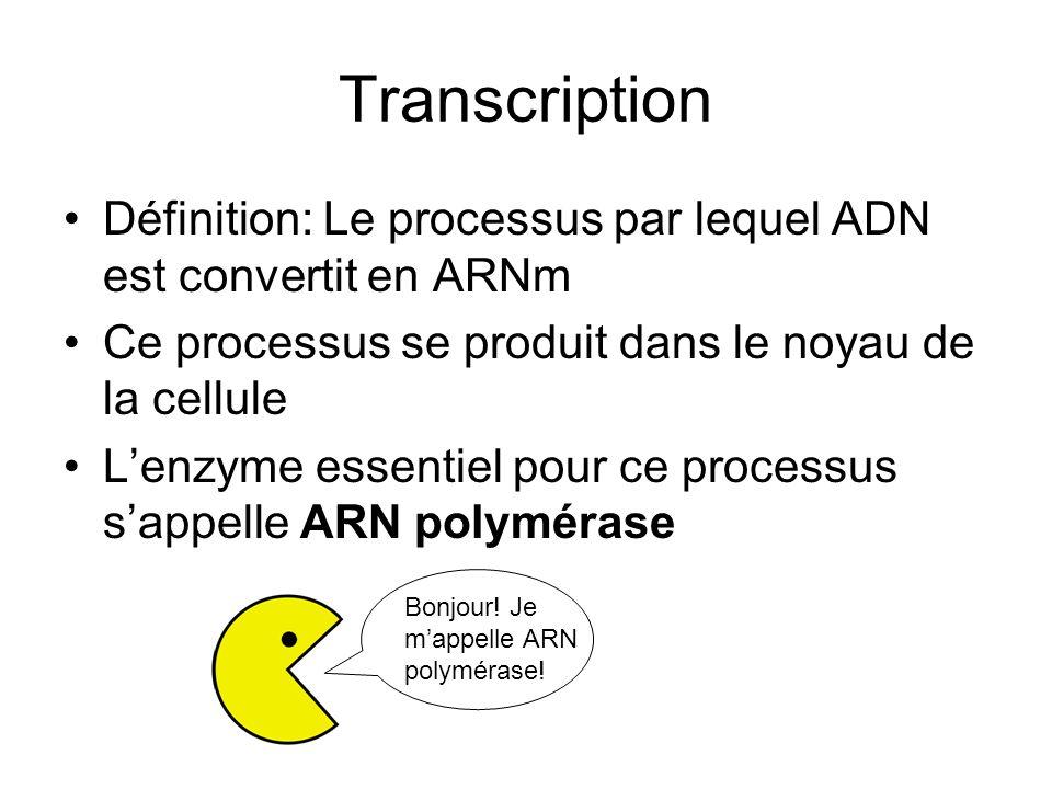 Définition: Le processus par lequel ADN est convertit en ARNm Ce processus se produit dans le noyau de la cellule Lenzyme essentiel pour ce processus sappelle ARN polymérase Bonjour.