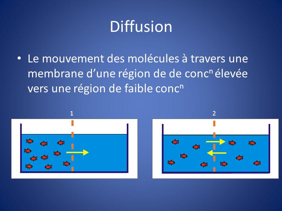 Diffusion Le mouvement des molécules à travers une membrane dune région de de conc n élevée vers une région de faible conc n 1 2
