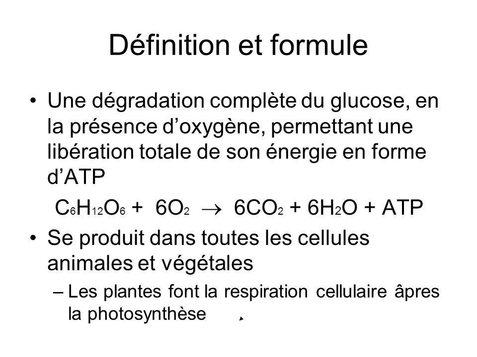 Définition et formule Une dégradation complète du glucose, en la présence doxygène, permettant une libération totale de son énergie en forme dATP C 6
