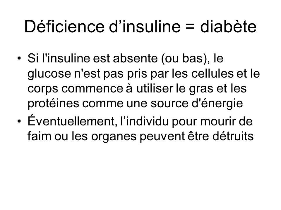 Déficience dinsuline = diabète Si l'insuline est absente (ou bas), le glucose n'est pas pris par les cellules et le corps commence à utiliser le gras
