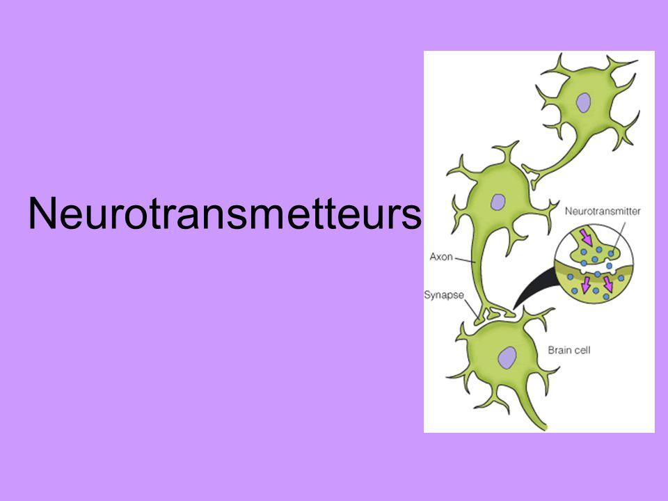 Quel est un neurotransmetteur.