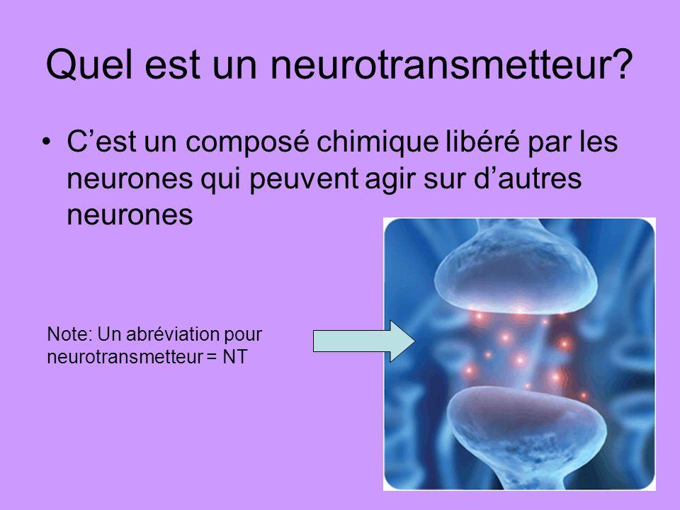 Quel est un neurotransmetteur? Cest un composé chimique libéré par les neurones qui peuvent agir sur dautres neurones Note: Un abréviation pour neurot