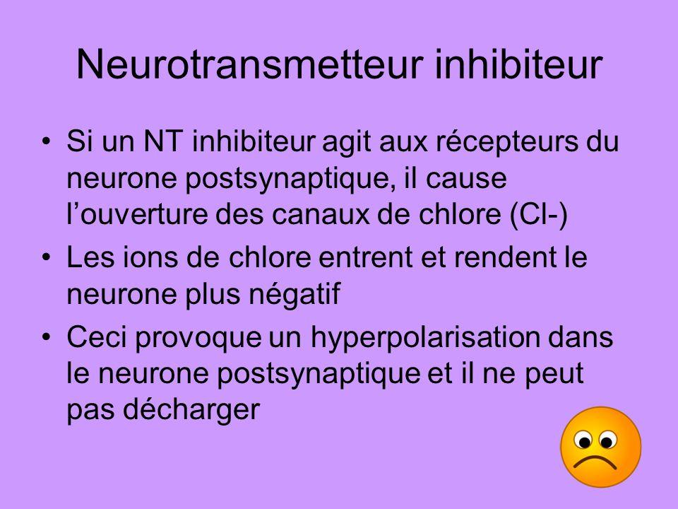 Neurotransmetteur inhibiteur Si un NT inhibiteur agit aux récepteurs du neurone postsynaptique, il cause louverture des canaux de chlore (Cl-) Les ion