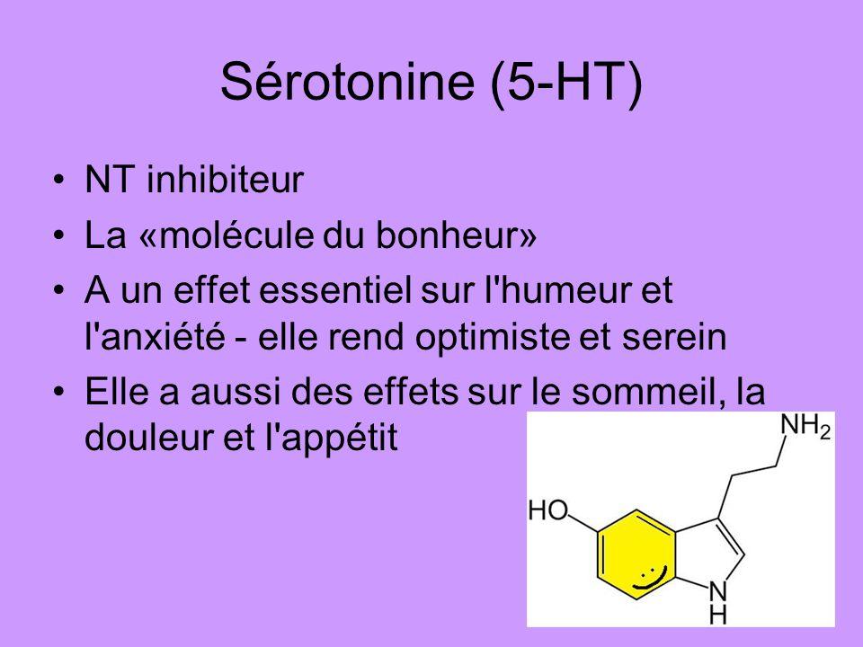 Sérotonine (5-HT) NT inhibiteur La «molécule du bonheur» A un effet essentiel sur l'humeur et l'anxiété - elle rend optimiste et serein Elle a aussi d