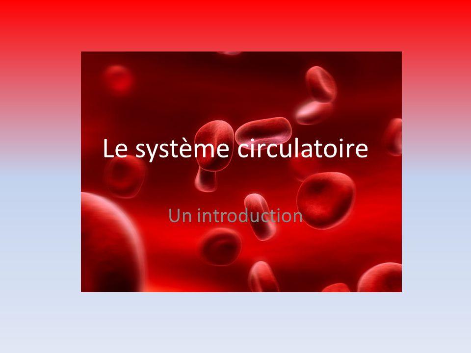 Fonctions du système circulatoire Transport des: – Gaz (e.g., O 2 et CO 2 ) – Nutriments (e.g., glucose) – Déchets (e.g., ammonium) – Hormones Contient les cellules immunitaires Maintien la température du corps CEST VRAIMENT UN SYSTÈME DE TRANSPORT!