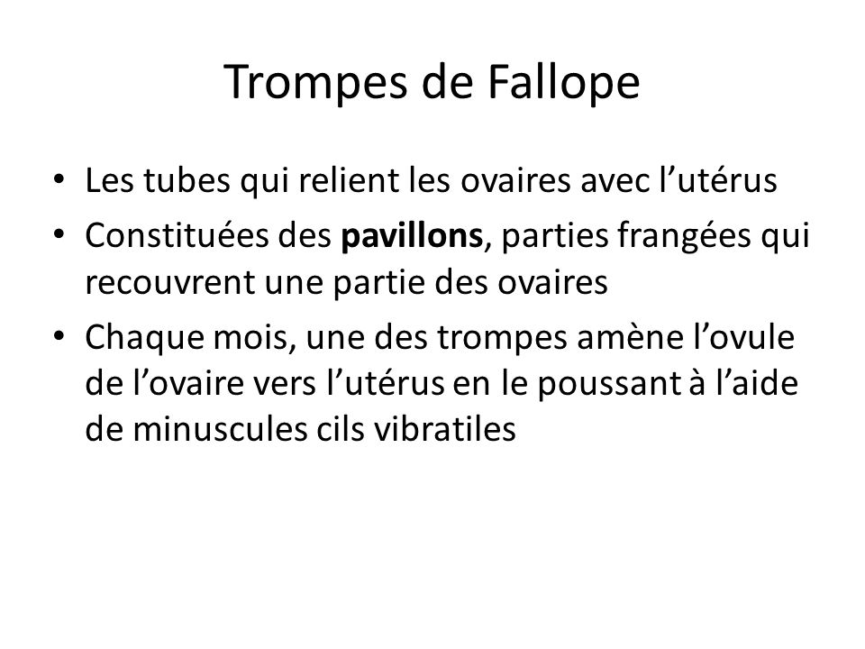 Trompes de Fallope Les tubes qui relient les ovaires avec lutérus Constituées des pavillons, parties frangées qui recouvrent une partie des ovaires Ch