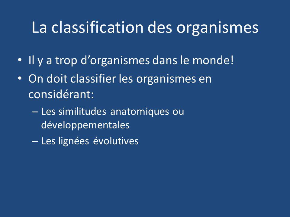 La classification des organismes Il y a trop dorganismes dans le monde! On doit classifier les organismes en considérant: – Les similitudes anatomique
