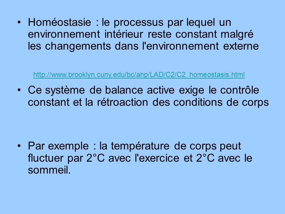 Homéostasie : le processus par lequel un environnement intérieur reste constant malgré les changements dans l'environnement externe Ce système de bala