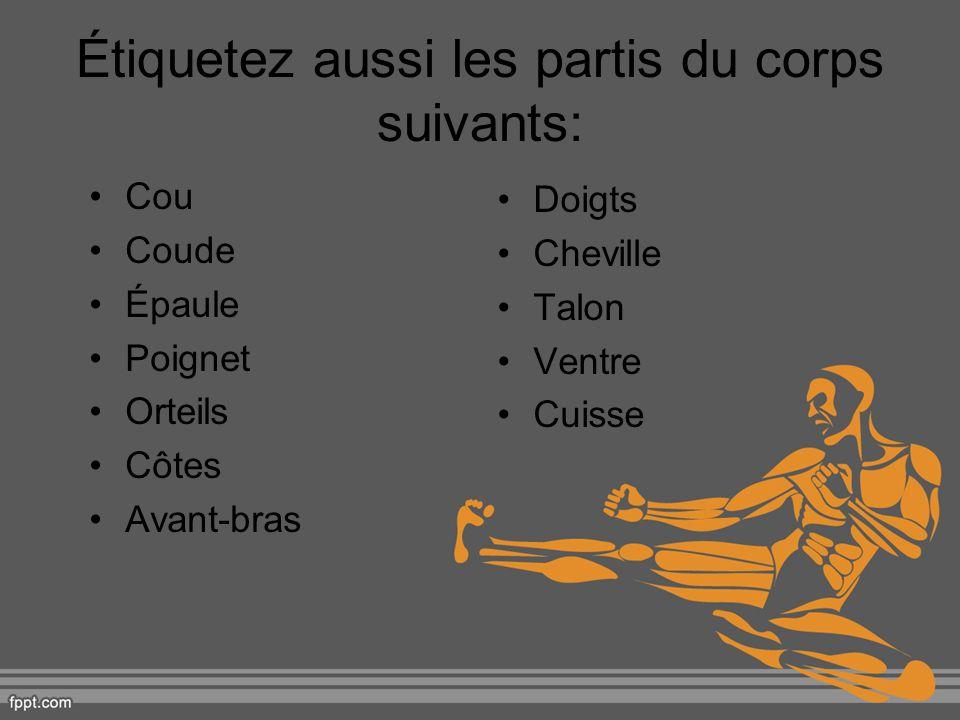 Étiquetez aussi les partis du corps suivants: Cou Coude Épaule Poignet Orteils Côtes Avant-bras Doigts Cheville Talon Ventre Cuisse