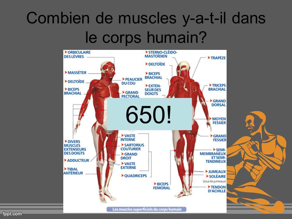 Combien de muscles dans notre visage et cou.Un quart des muscles de notre corps.