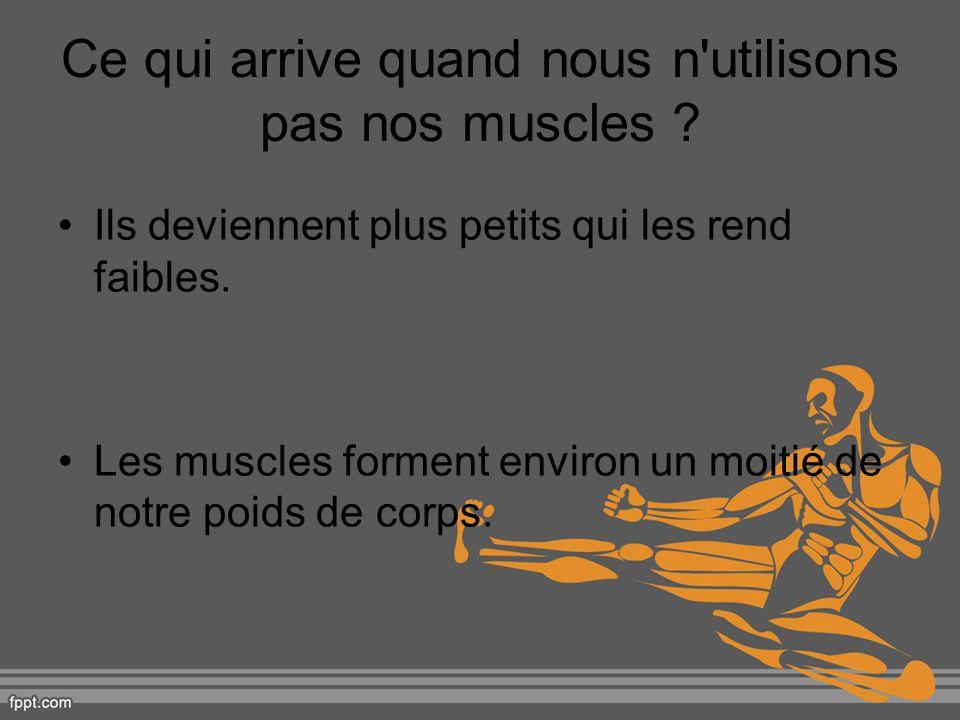Ce qui arrive quand nous n'utilisons pas nos muscles ? Ils deviennent plus petits qui les rend faibles. Les muscles forment environ un moitié de notre