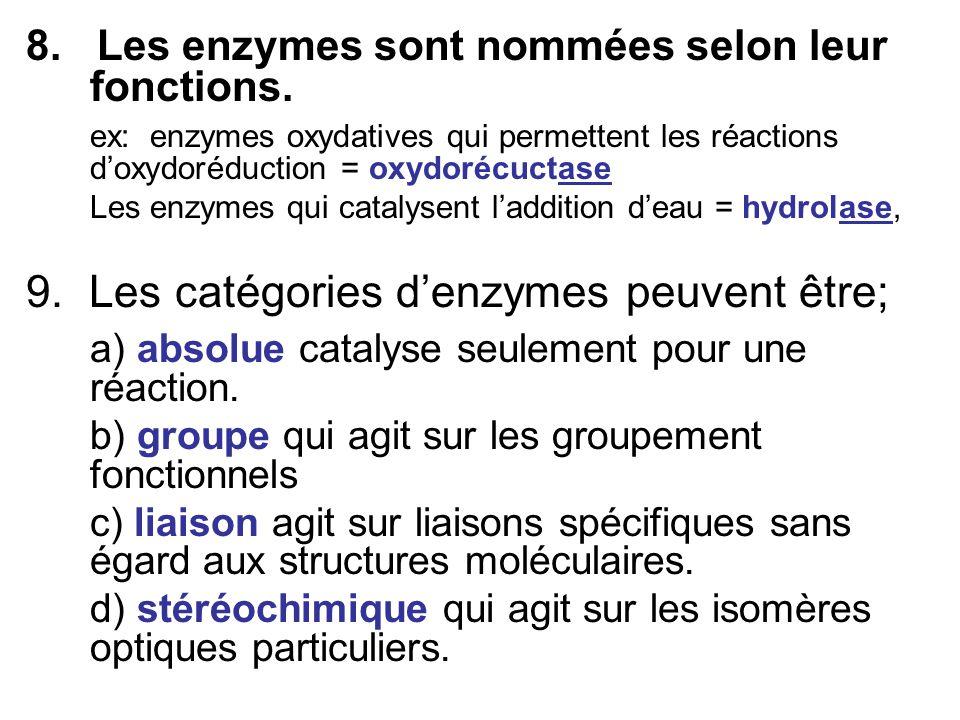 8. Les enzymes sont nommées selon leur fonctions. ex: enzymes oxydatives qui permettent les réactions doxydoréduction = oxydorécuctase Les enzymes qui