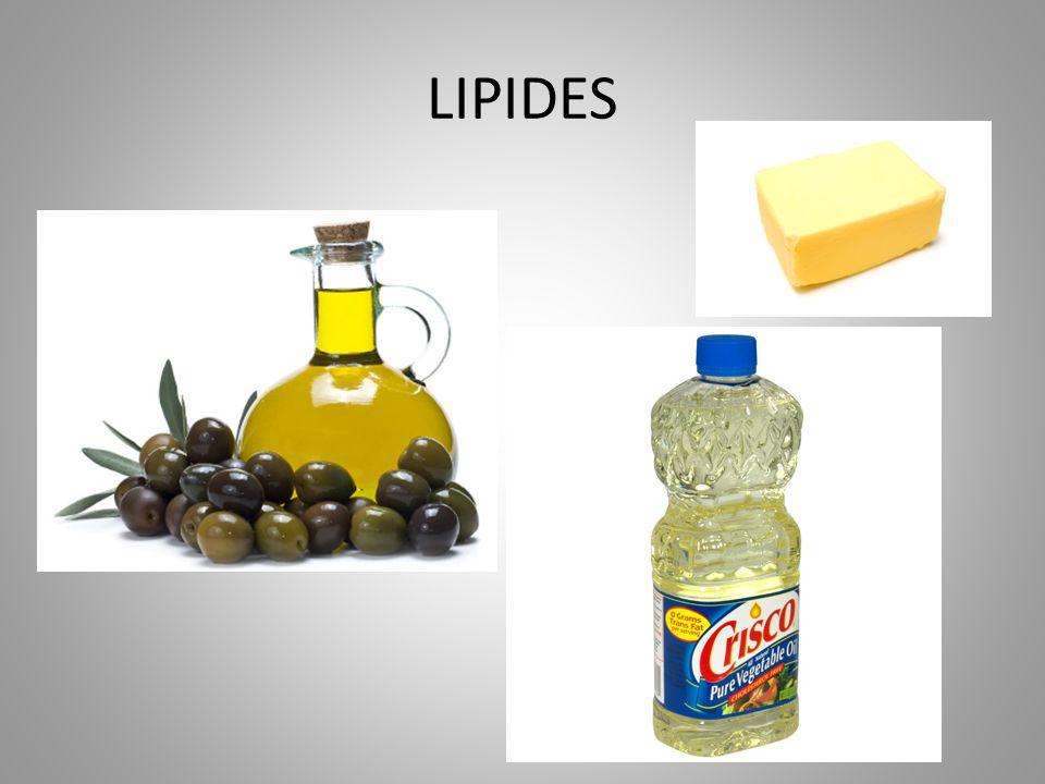 LIPIDES