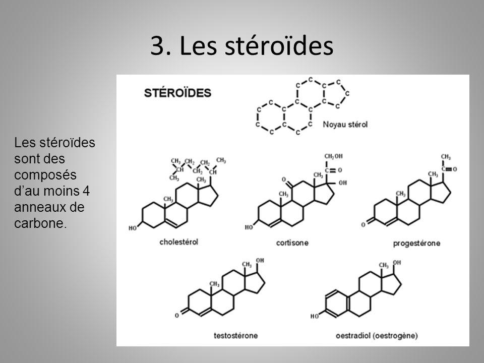 3. Les stéroïdes Les stéroïdes sont des composés dau moins 4 anneaux de carbone.