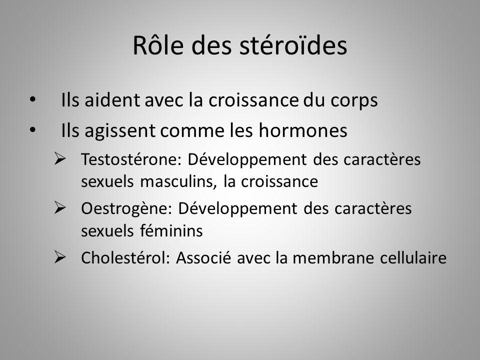 Rôle des stéroïdes Ils aident avec la croissance du corps Ils agissent comme les hormones Testostérone: Développement des caractères sexuels masculins