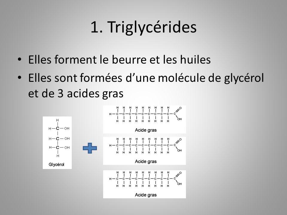 1. Triglycérides Elles forment le beurre et les huiles Elles sont formées dune molécule de glycérol et de 3 acides gras
