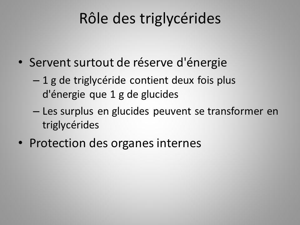 Rôle des triglycérides Servent surtout de réserve d'énergie – 1 g de triglycéride contient deux fois plus d'énergie que 1 g de glucides – Les surplus