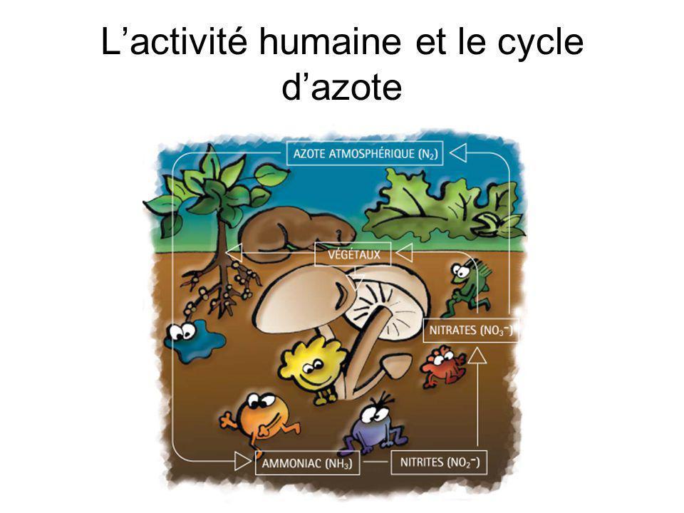 Activités humaines qui affectent le cycle de lazote: 1.La combustion de combustibles fossiles 2.Lutilisation des engrais artificiels