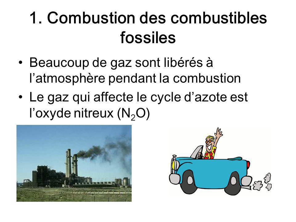 1. Combustion des combustibles fossiles Beaucoup de gaz sont libérés à latmosphère pendant la combustion Le gaz qui affecte le cycle dazote est loxyde