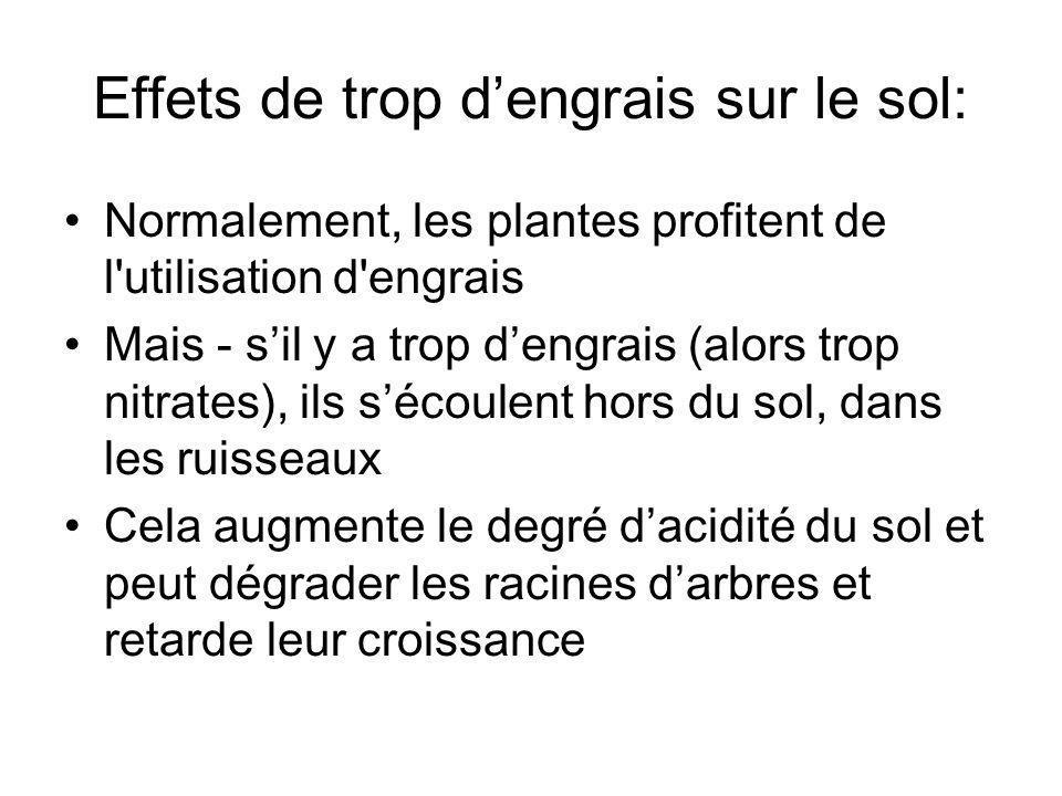 Effets de trop dengrais sur le sol: Normalement, les plantes profitent de l'utilisation d'engrais Mais - sil y a trop dengrais (alors trop nitrates),