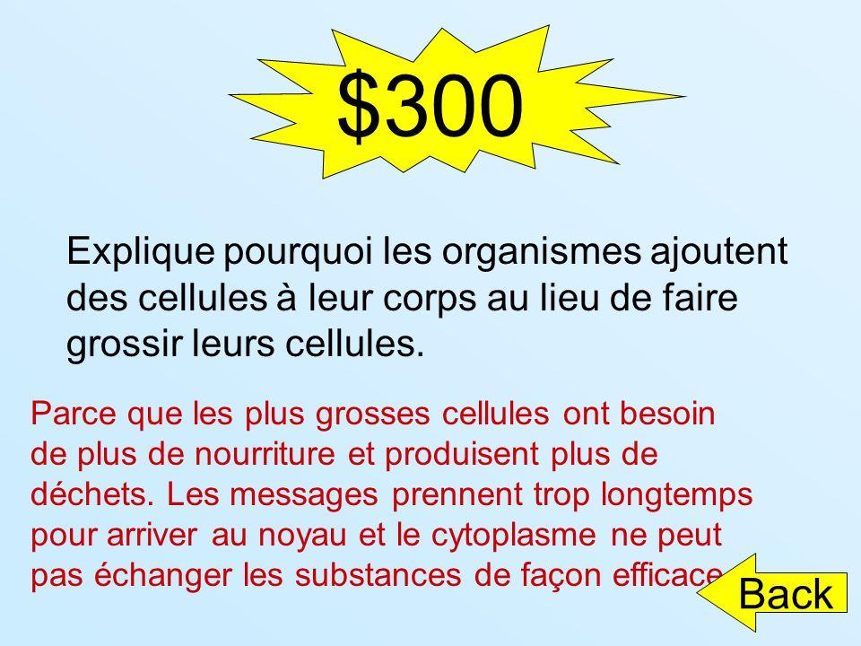 $300 Explique pourquoi les organismes ajoutent des cellules à leur corps au lieu de faire grossir leurs cellules. Parce que les plus grosses cellules