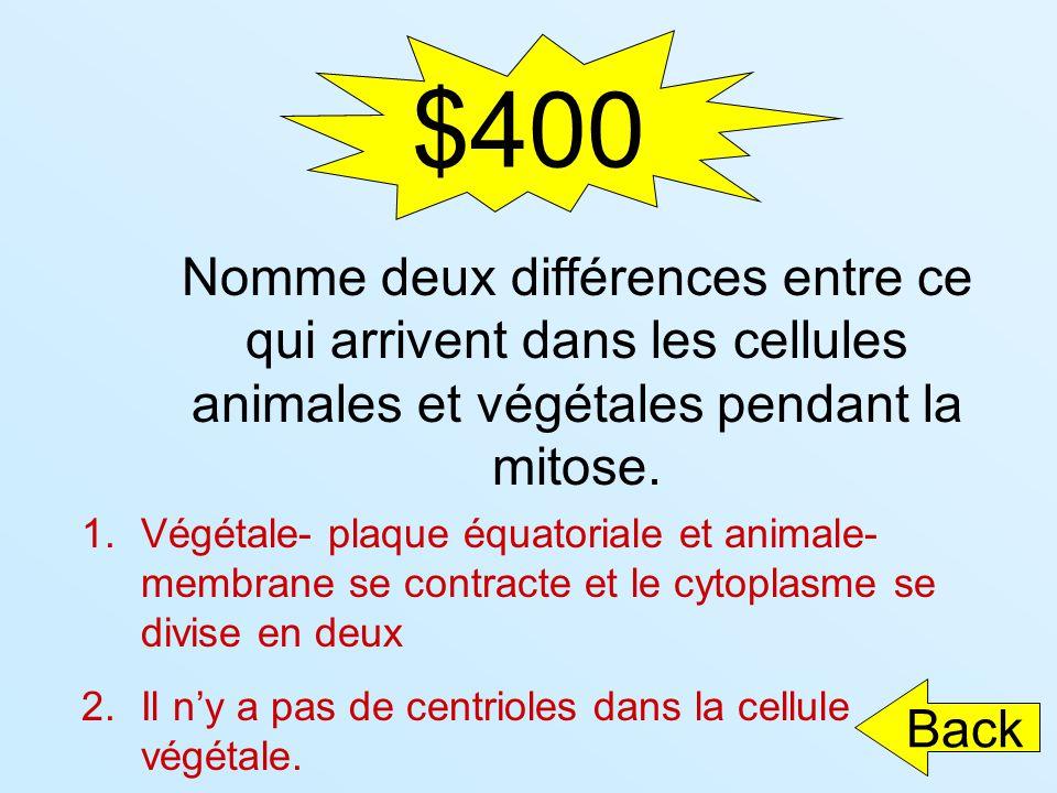 $400 1.Végétale- plaque équatoriale et animale- membrane se contracte et le cytoplasme se divise en deux 2.Il ny a pas de centrioles dans la cellule v
