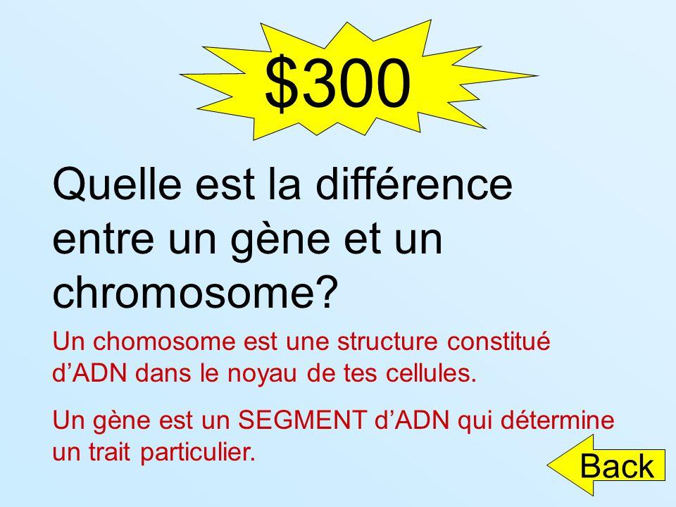 $300 Quelle est la différence entre un gène et un chromosome? Un chomosome est une structure constitué dADN dans le noyau de tes cellules. Un gène est