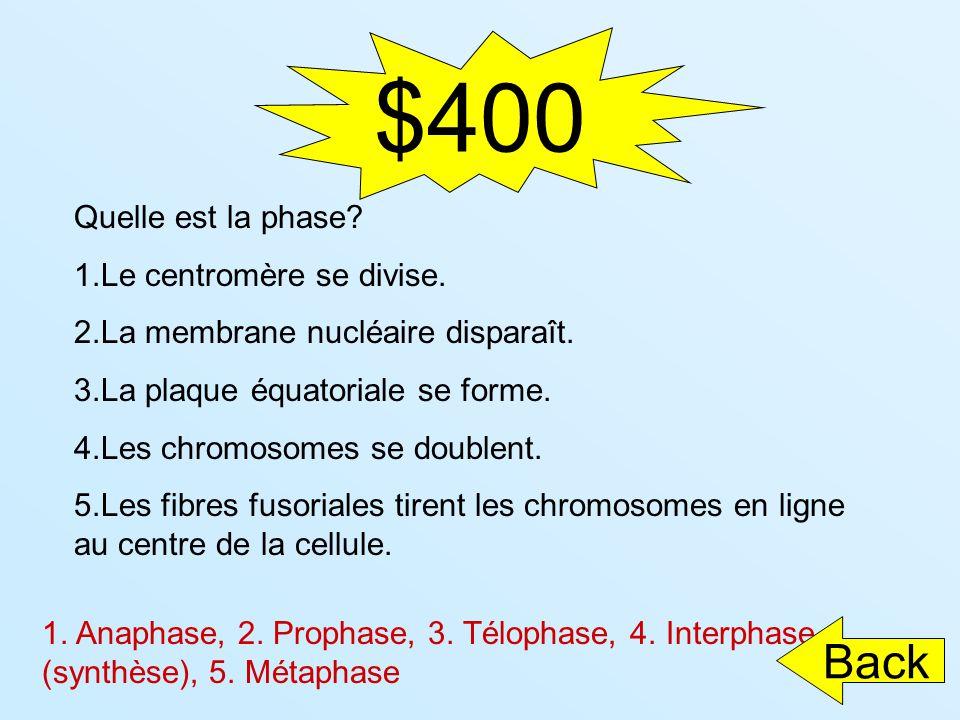$400 Quelle est la phase? 1.Le centromère se divise. 2.La membrane nucléaire disparaît. 3.La plaque équatoriale se forme. 4.Les chromosomes se doublen