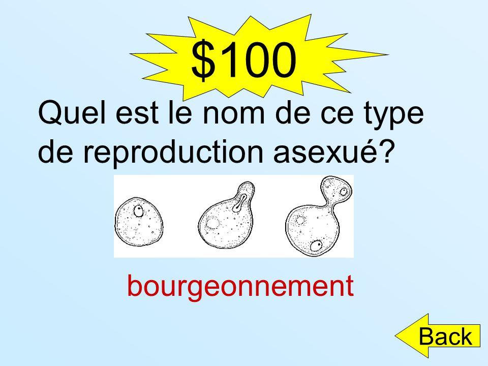 $100 Quel est le nom de ce type de reproduction asexué? bourgeonnement Back