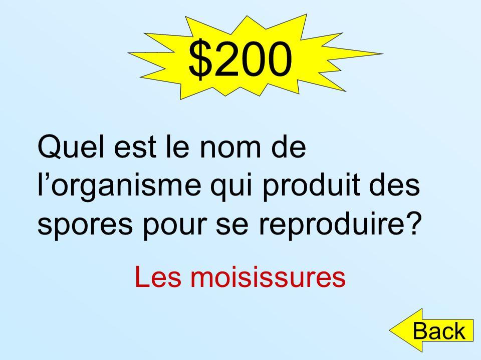 $200 Quel est le nom de lorganisme qui produit des spores pour se reproduire? Les moisissures Back