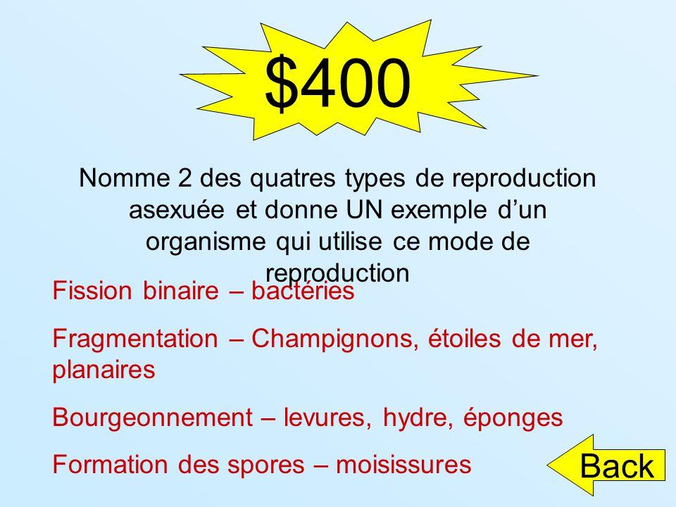 $400 Fission binaire – bactéries Fragmentation – Champignons, étoiles de mer, planaires Bourgeonnement – levures, hydre, éponges Formation des spores