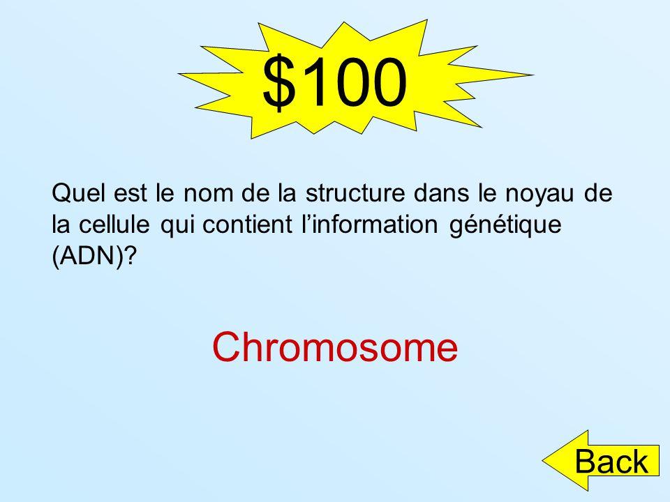 $100 Quel est le nom de la structure dans le noyau de la cellule qui contient linformation génétique (ADN)? Chromosome Back