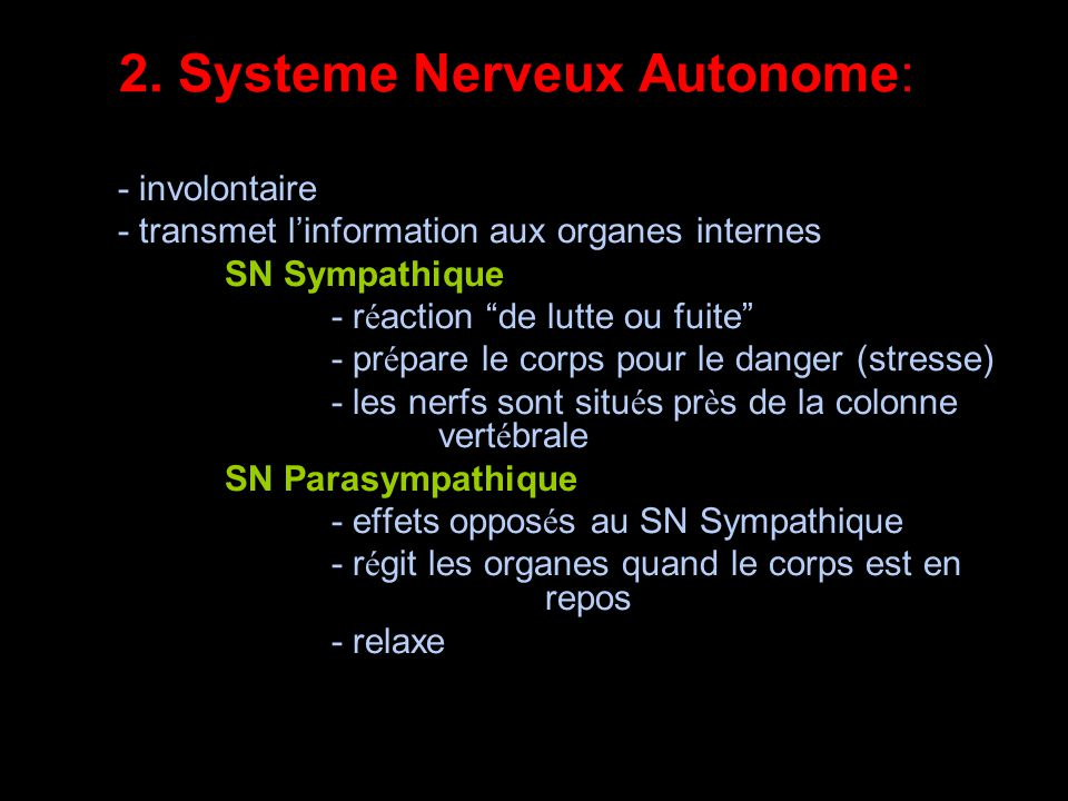 muscle Neurone sensorielle Neurone moteure A lencéphale