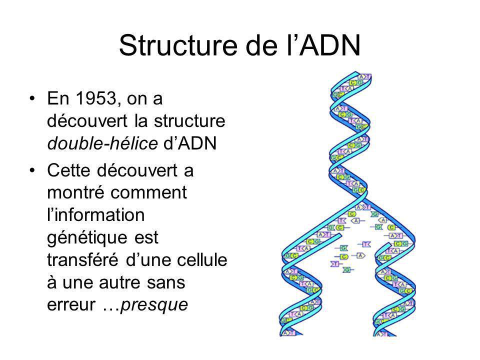 Structure de lADN En 1953, on a découvert la structure double-hélice dADN Cette découvert a montré comment linformation génétique est transféré dune cellule à une autre sans erreur …presque