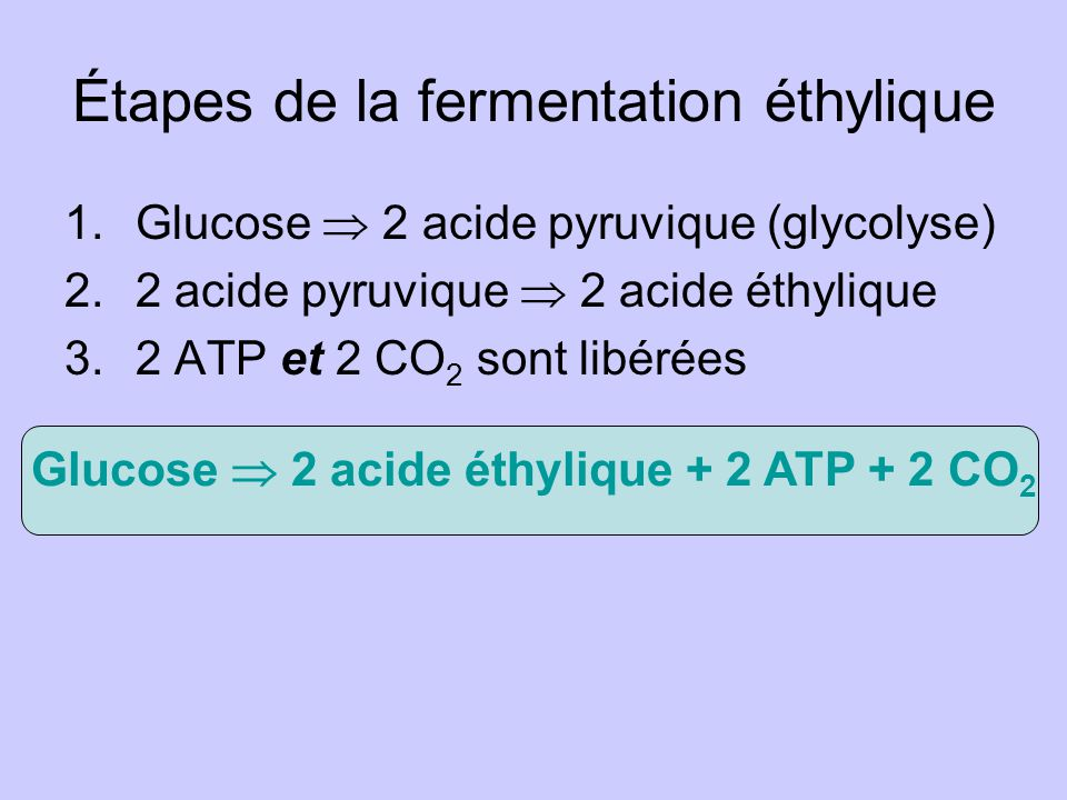 Étapes de la fermentation éthylique 1.Glucose 2 acide pyruvique (glycolyse) 2.2 acide pyruvique 2 acide éthylique 3.2 ATP et 2 CO 2 sont libérées Glucose 2 acide éthylique + 2 ATP + 2 CO 2