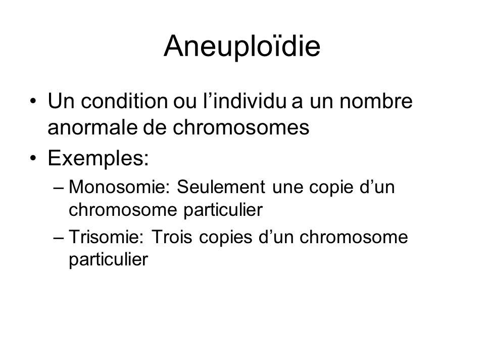 Aneuploïdie Un condition ou lindividu a un nombre anormale de chromosomes Exemples: –Monosomie: Seulement une copie dun chromosome particulier –Trisom