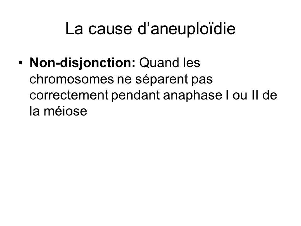 La cause daneuploïdie Non-disjonction: Quand les chromosomes ne séparent pas correctement pendant anaphase I ou II de la méiose