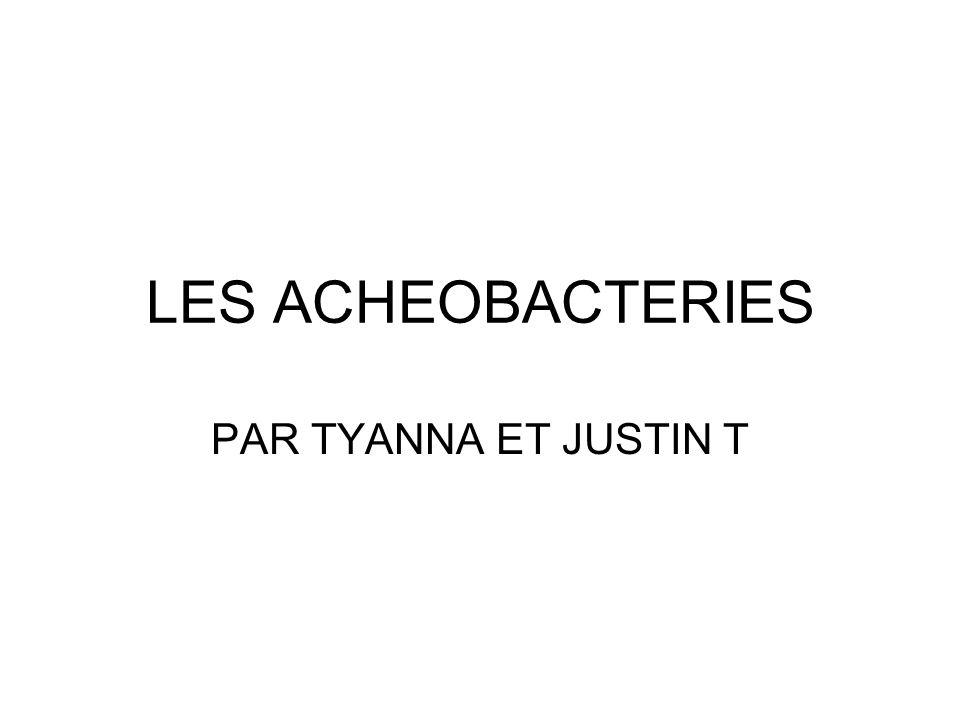 LES ARCHEOBACTERIES Ils sont forment des micro organismes unicellulaires qui vivent en les environnements sans oxygène.
