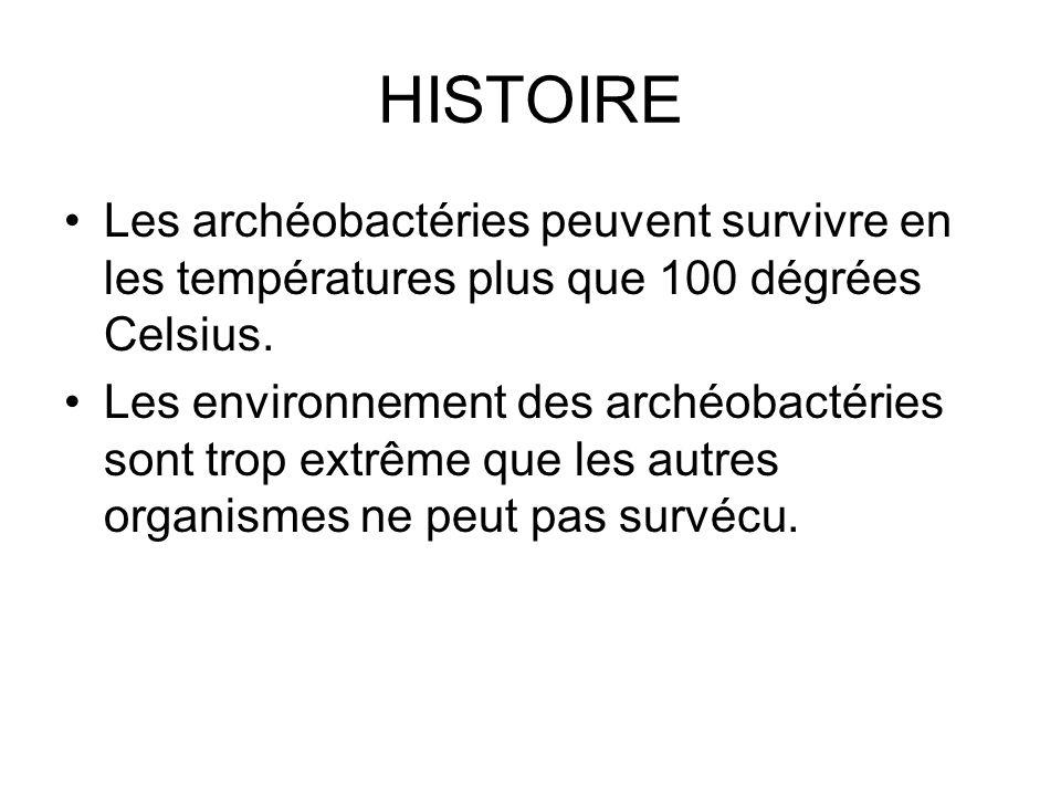 HISTOIRE Les archéobactéries peuvent survivre en les températures plus que 100 dégrées Celsius.