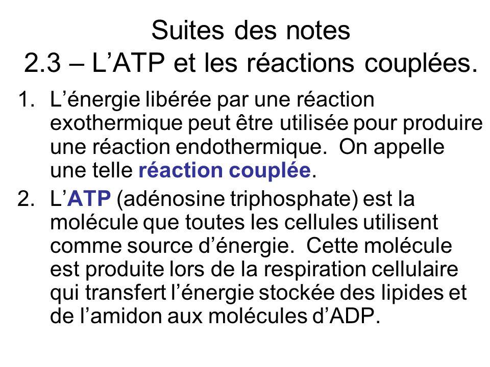 Suites des notes 2.3 – LATP et les réactions couplées.