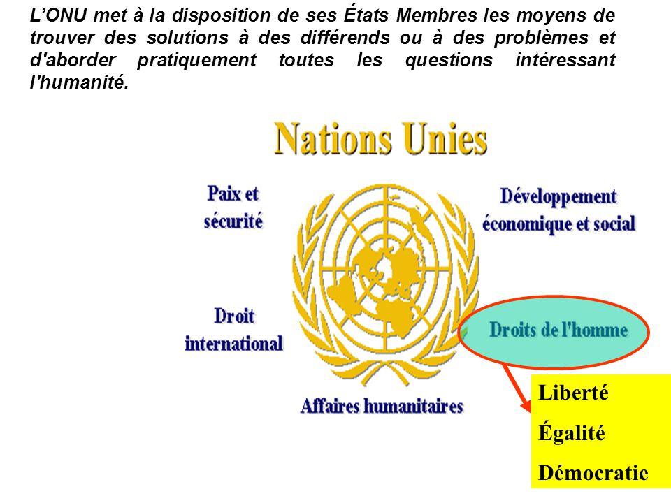 LONU met à la disposition de ses États Membres les moyens de trouver des solutions à des différends ou à des problèmes et d'aborder pratiquement toute