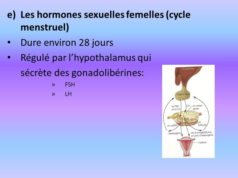 e)Les hormones sexuelles femelles (cycle menstruel) Dure environ 28 jours Régulé par lhypothalamus qui sécrète des gonadolibérines: » FSH » LH