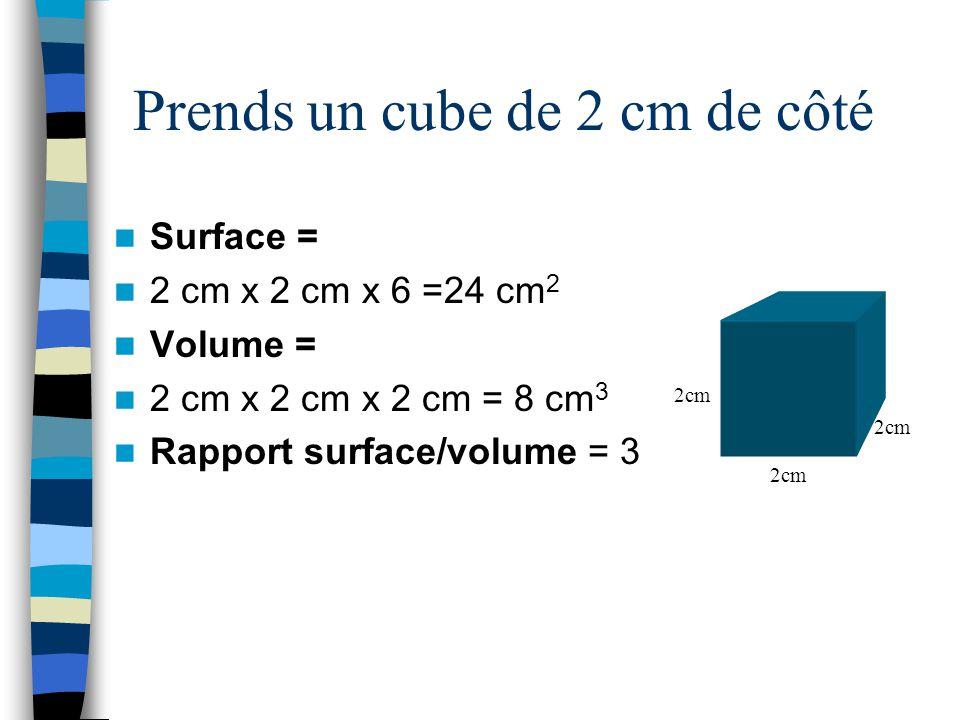 Résumé Cube 1 cm de côté Surface= 6 cm 2 Volume= 1 cm 3 Rapport S/V = 6 Cube 2 cm de côté Surface= 24 cm 2 Volume= 8 cm 3 Rapport S/V = 3 Un grand rapport surface/volume favorise les échanges entre la cellules et son environnement.