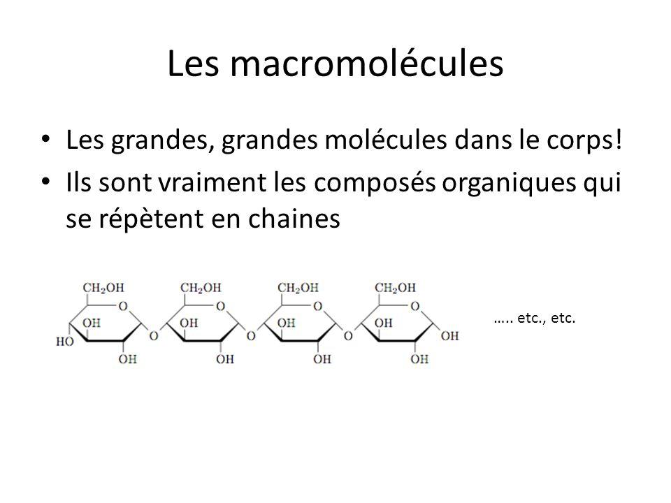 Les macromolécules Les grandes, grandes molécules dans le corps! Ils sont vraiment les composés organiques qui se répètent en chaines ….. etc., etc.