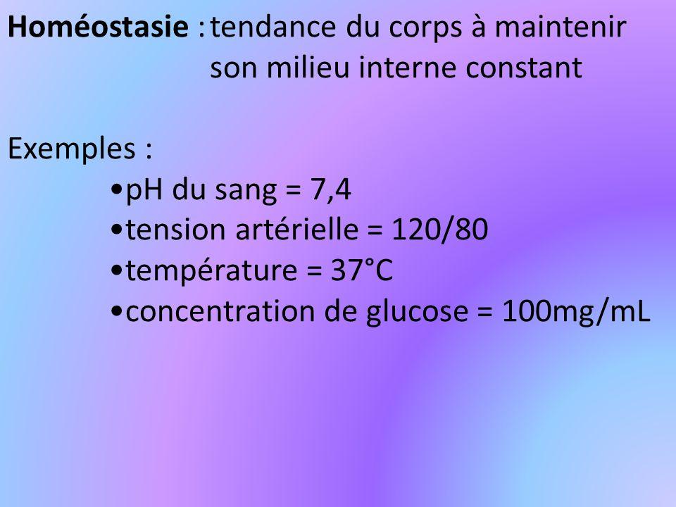 Homéostasie :tendance du corps à maintenir son milieu interne constant Exemples : pH du sang = 7,4 tension artérielle = 120/80 température = 37°C concentration de glucose = 100mg/mL